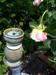Fontaine en céramique, avec rose