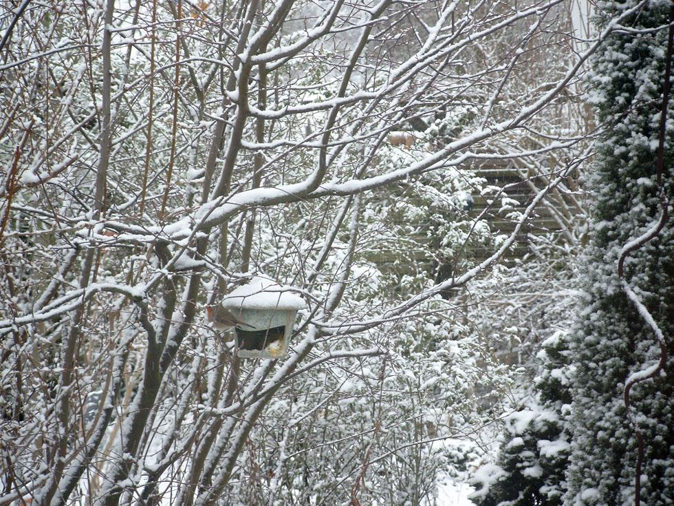 Vogelhaus - Futterstelle - aus frostsicherer Keramik