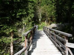 Pont sur l'Arve Chalet Chamonix Les Lupins